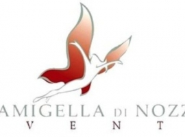 logo-DamigelladiNozze