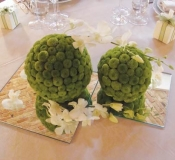 Matrimonio Color Verde